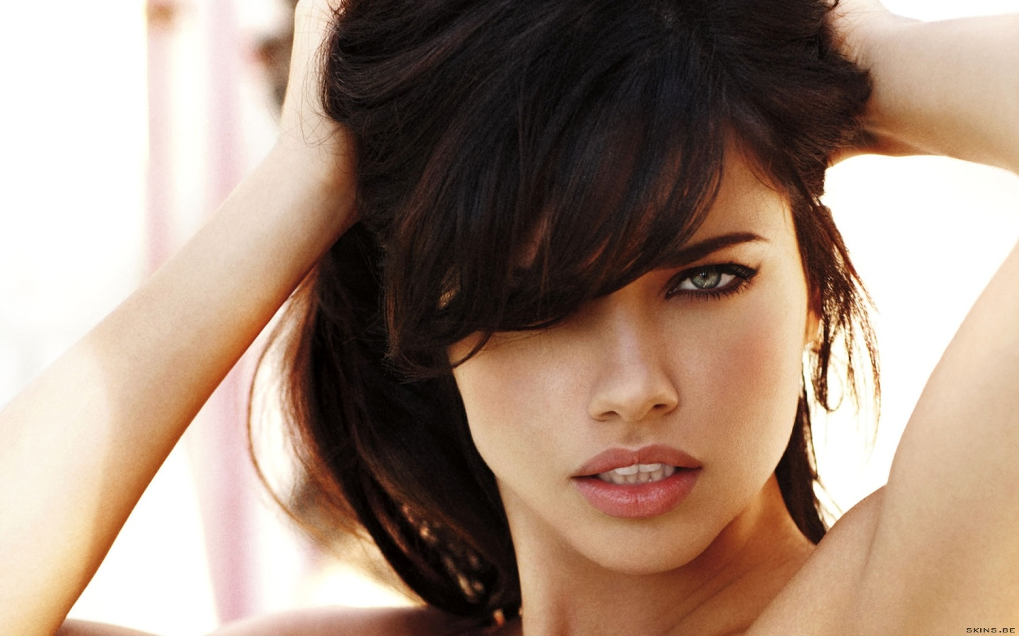 Adriana Lima wallpaper (#40016)