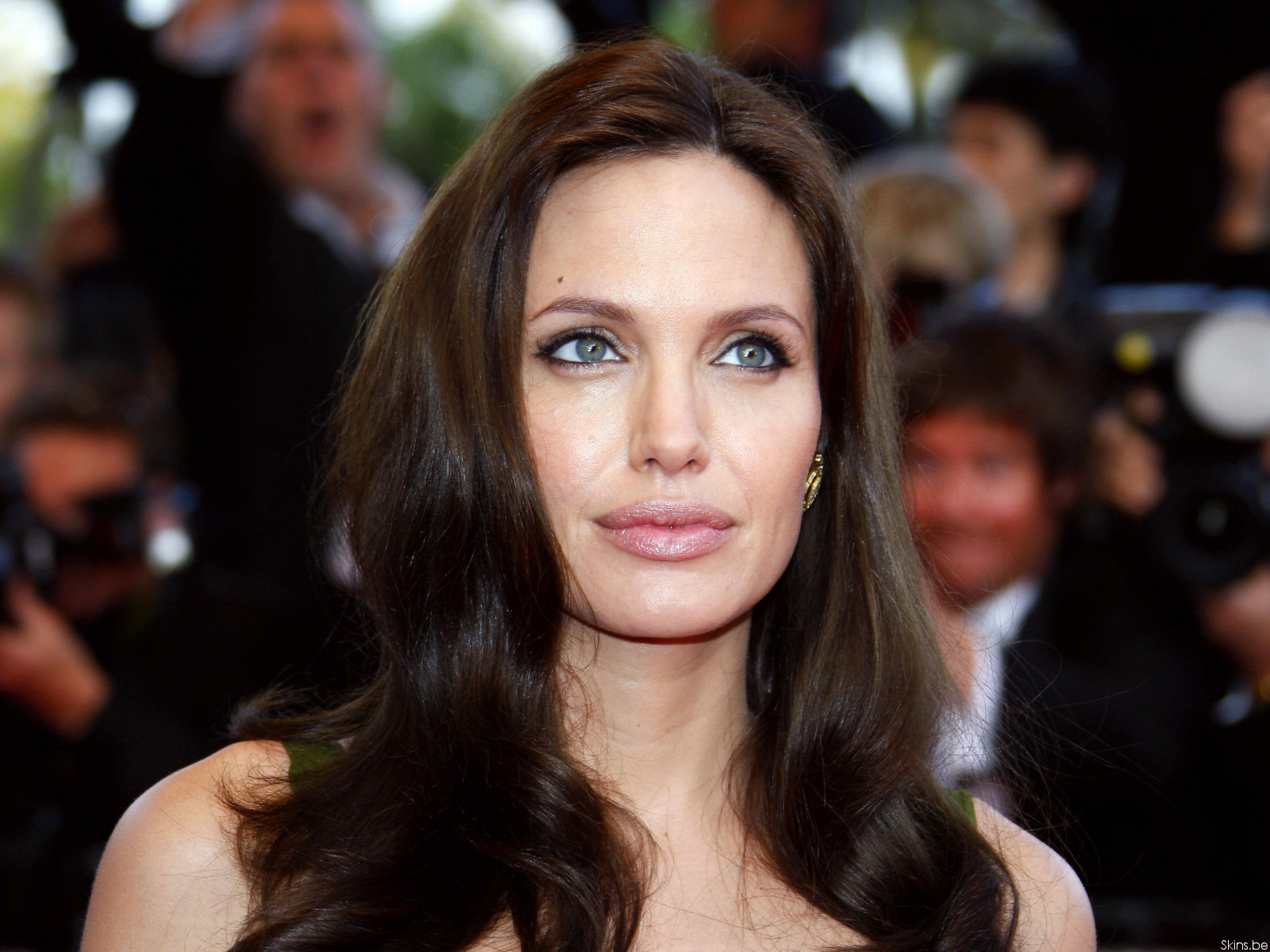 Angelina Jolie wallpaper (#30803)
