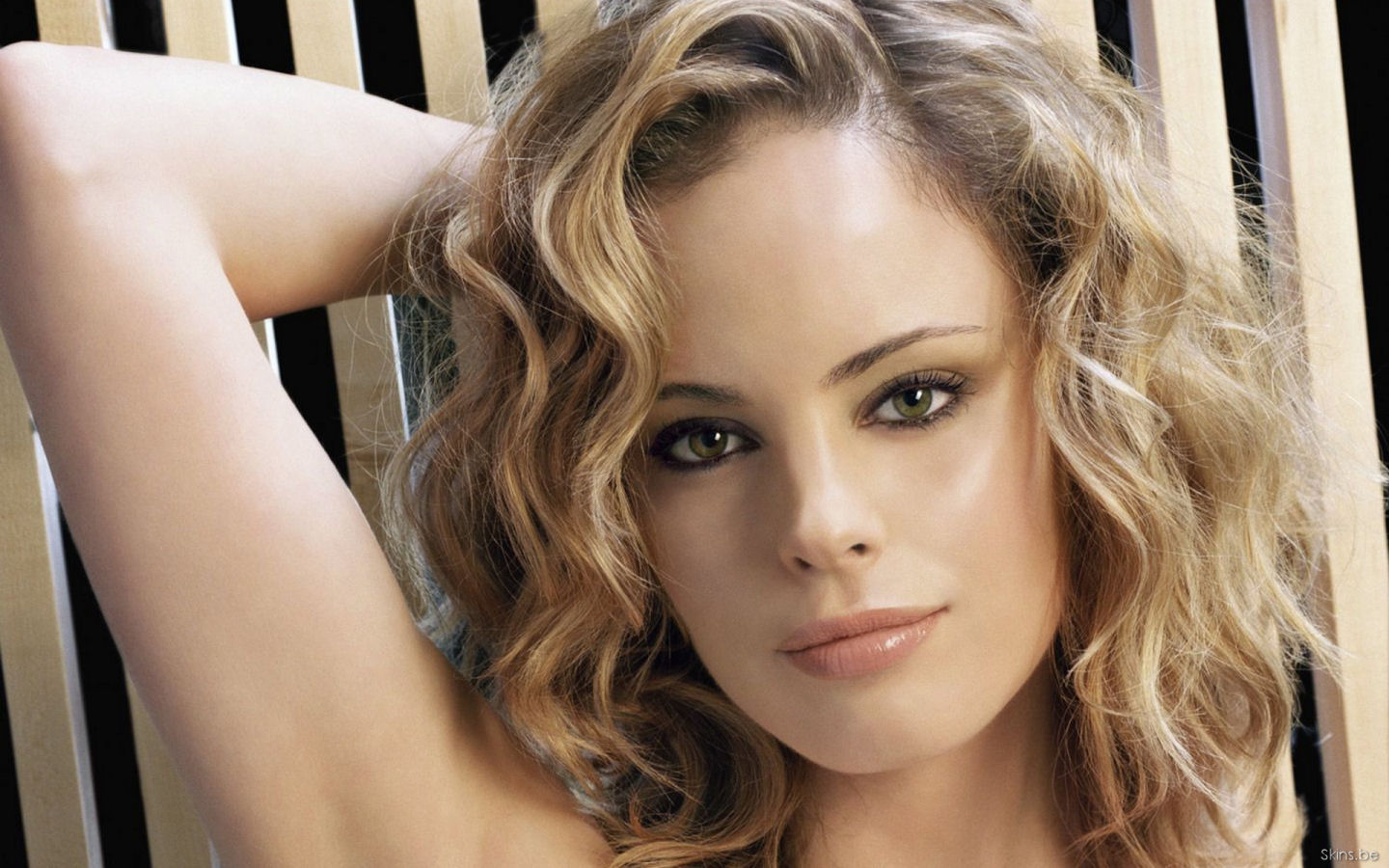Chandra West wallpaper (#26911)