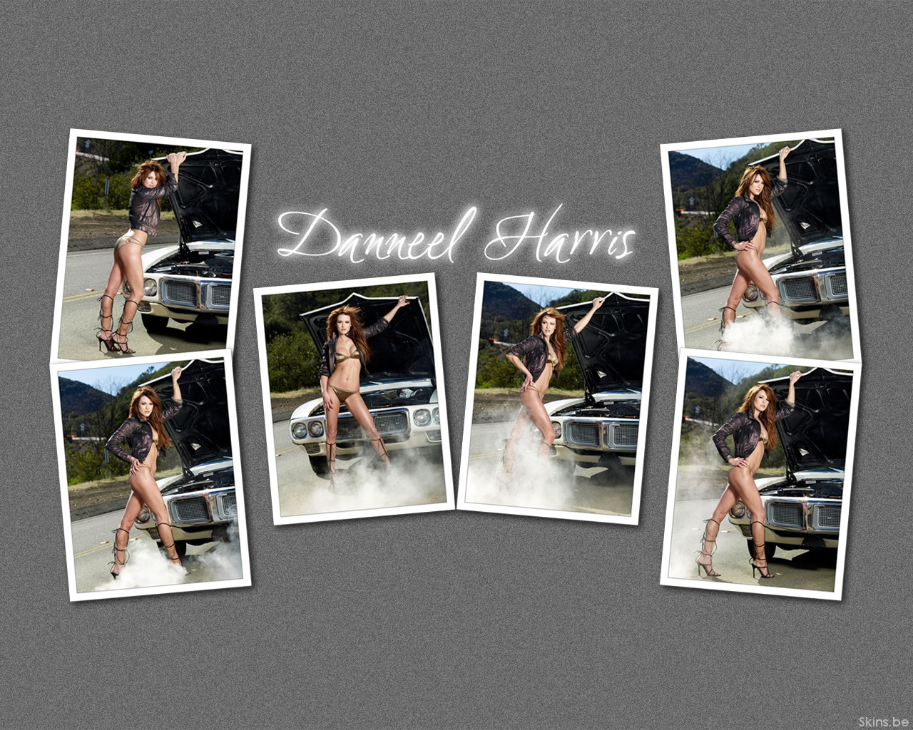 Danneel Harris wallpaper (#32559)