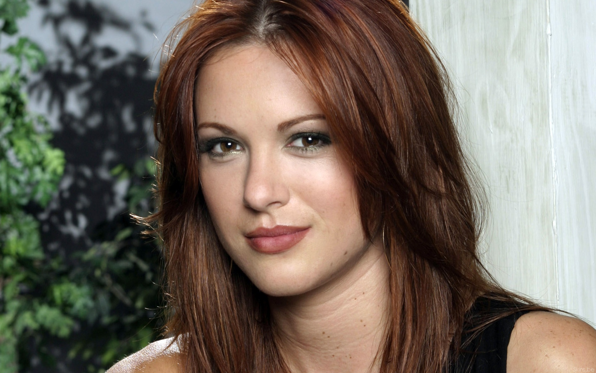 Danneel Harris wallpaper (#31649)