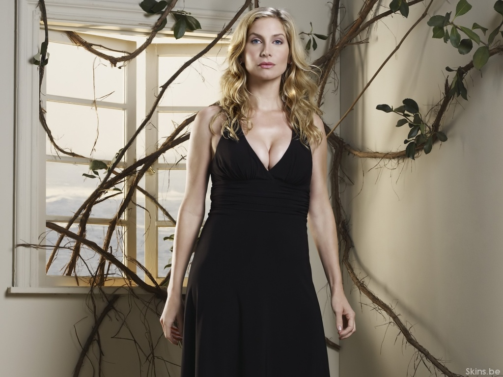 elizabeth mitchell computer hd - photo #12
