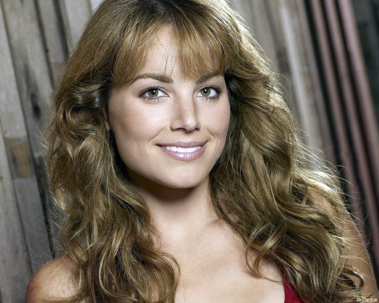 erica durance computer wallpaper - photo #19