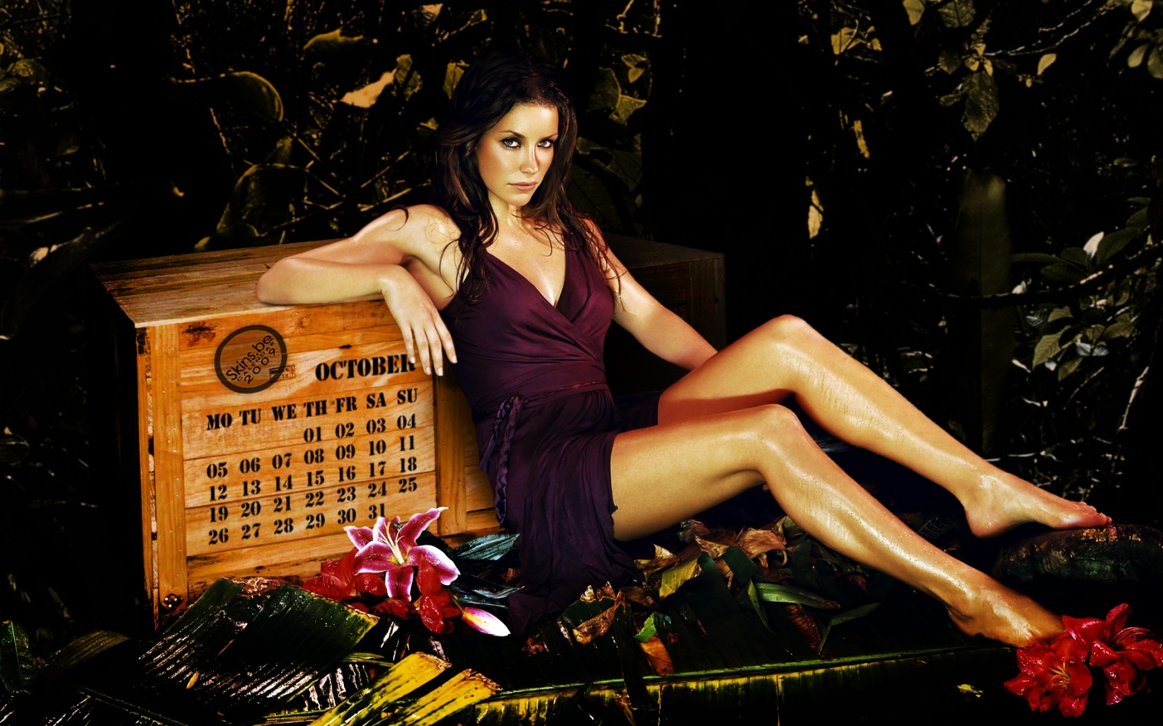 Evangeline in Real Steel - Evangeline Lilly Image