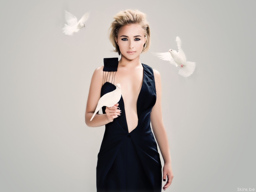 Hayden Panettiere wallpaper (#32536)
