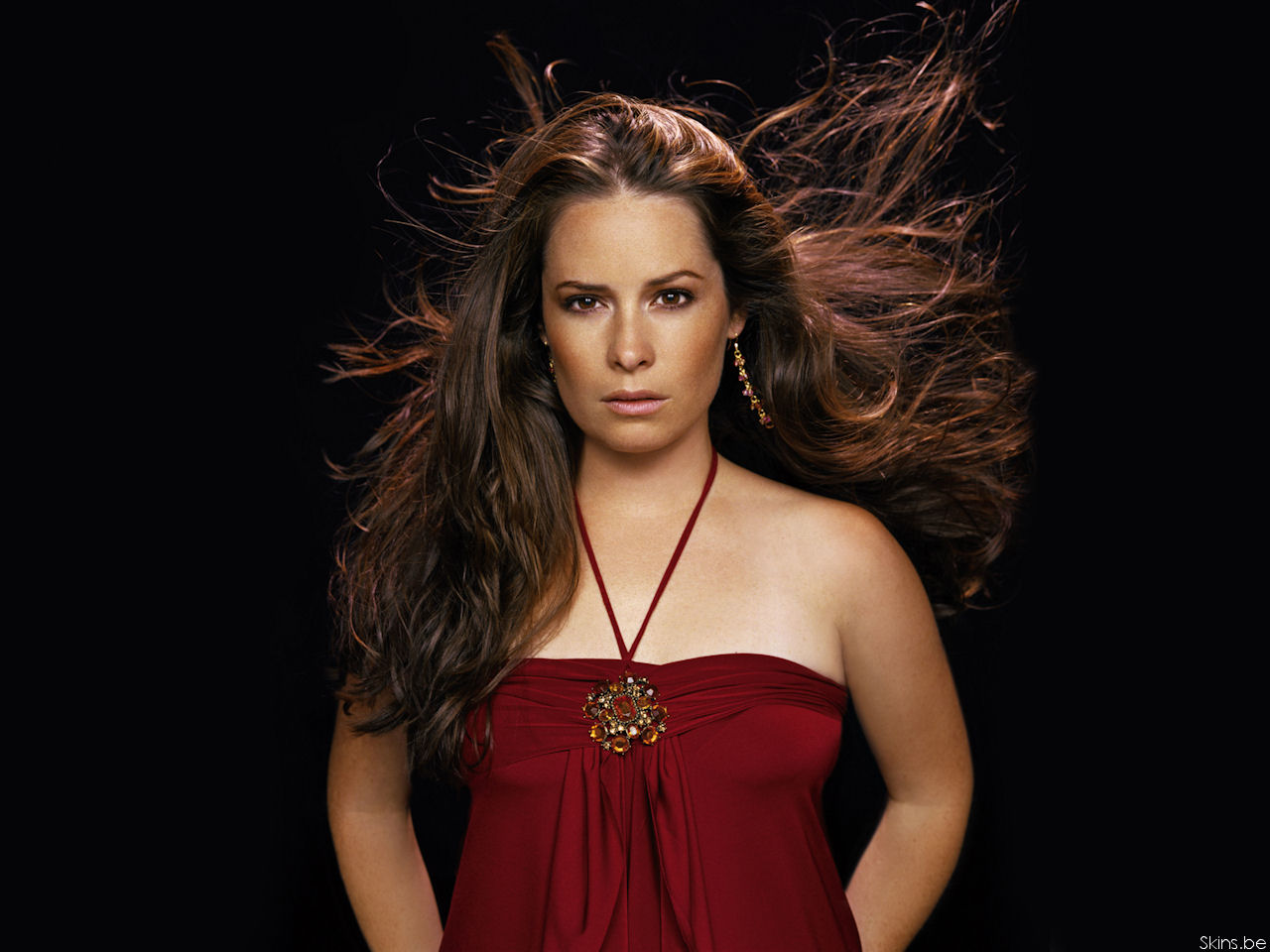 Holly Marie Combs wallpaper (#29428)