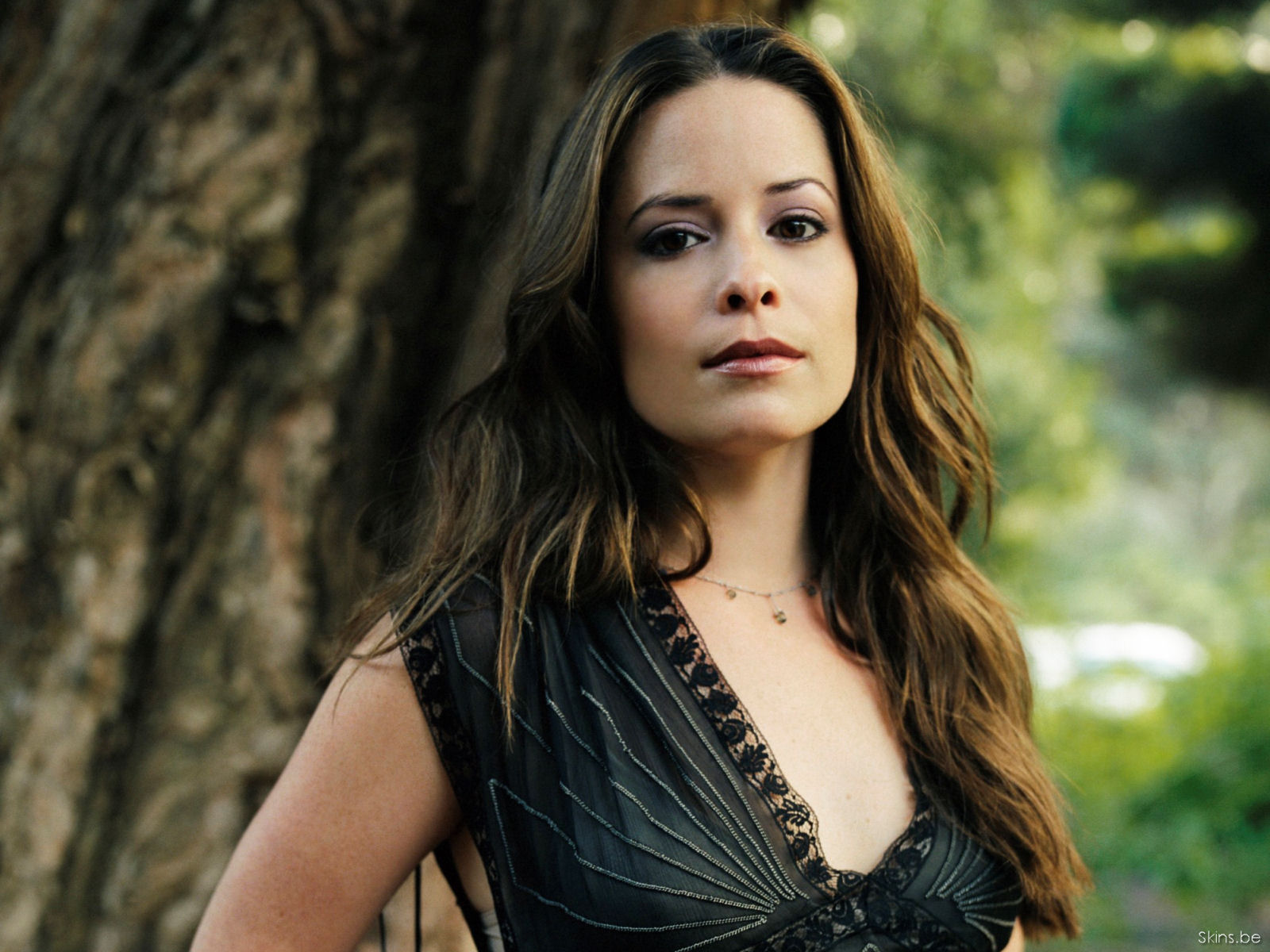 Holly Marie Combs wallpaper (#27352)
