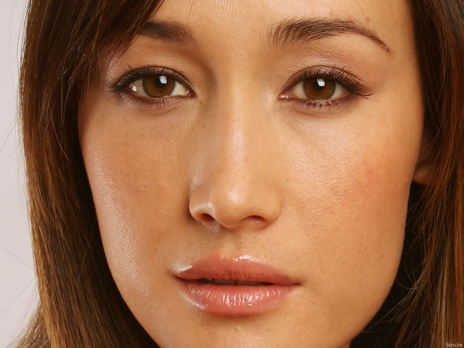Maggie Q wallpaper (#33958)