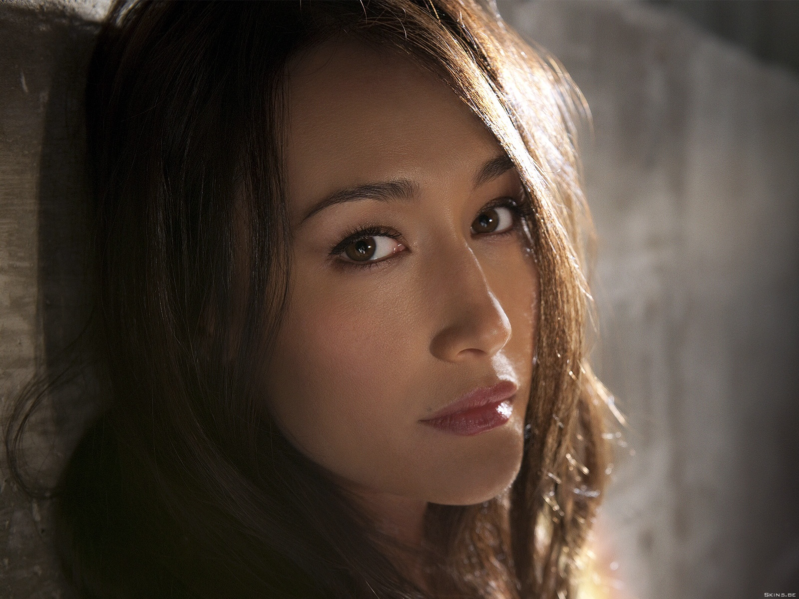 Maggie Q wallpaper (#41281)