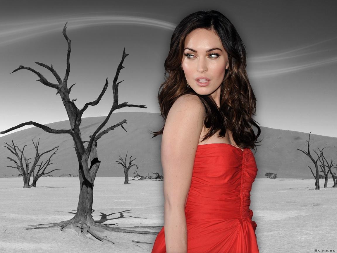 Megan Fox wallpaper (#40416)