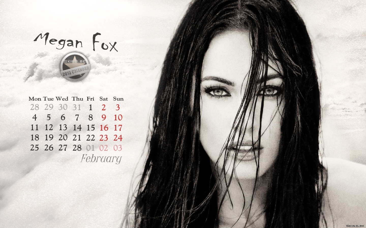 Megan Fox wallpaper (#41562)