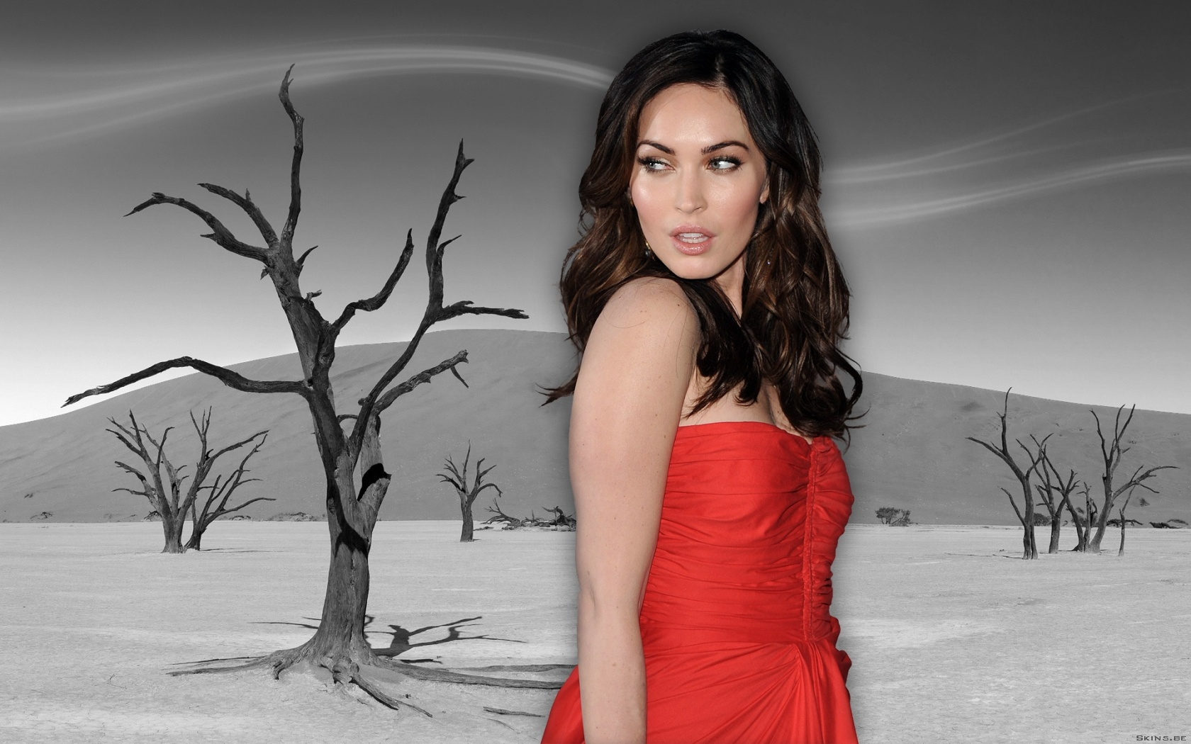 Megan Fox wallpaper (#40416)