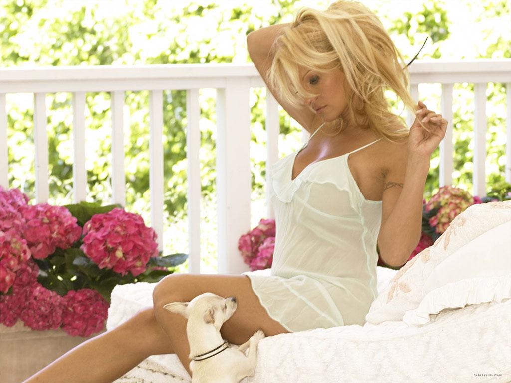 Pamela Anderson wallpaper (#23446)