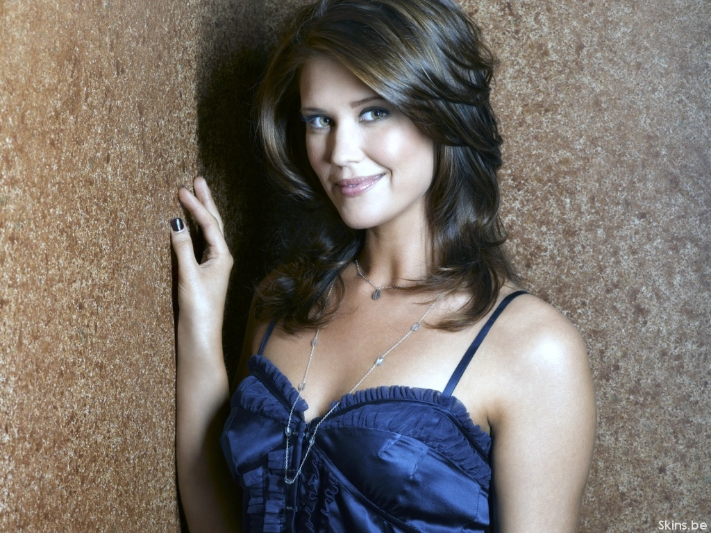 This Sarah Lancaster Wallpaper (#34833) was scaled down in order to fit your ...
