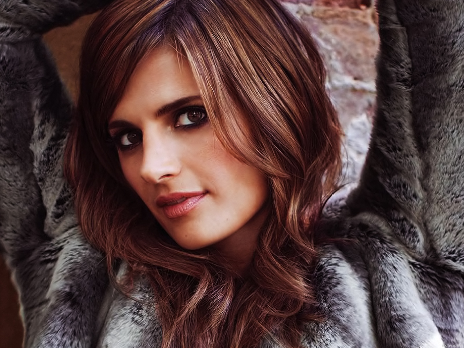 Stana Katic wallpaper (#41394)