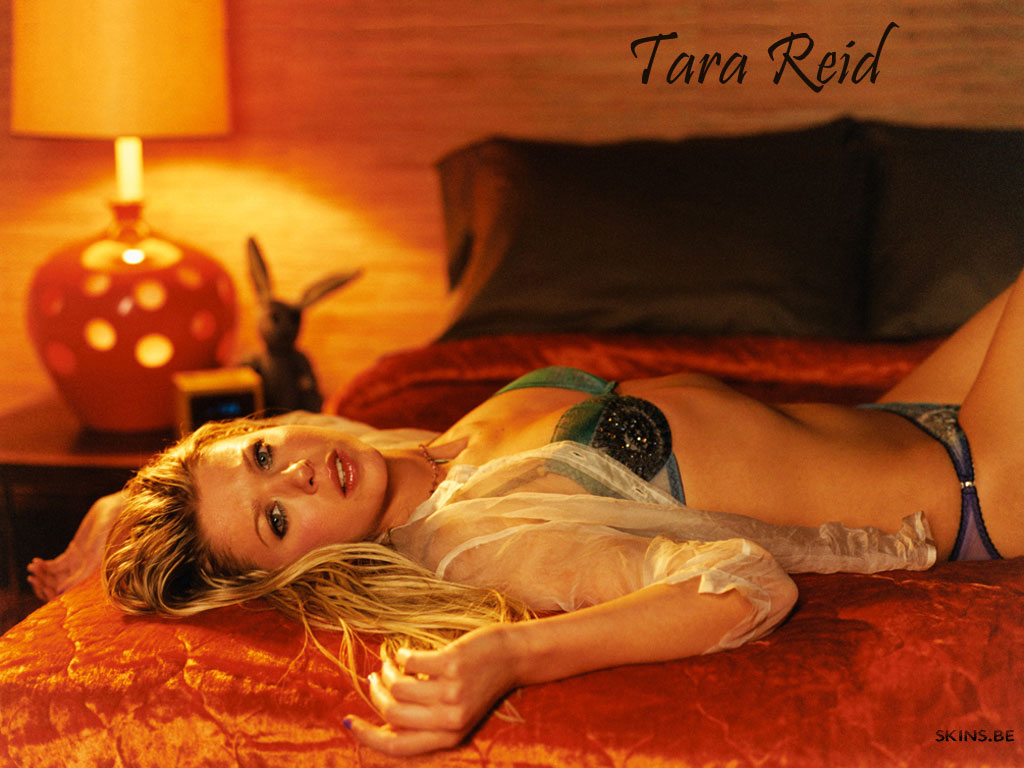 Tara Reid wallpaper (#4557)